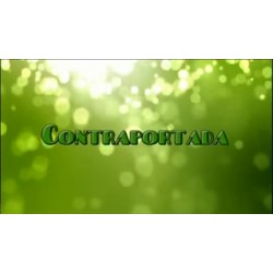 CONTRAPORTADA CASCO INTELIGENTE 10-10-13